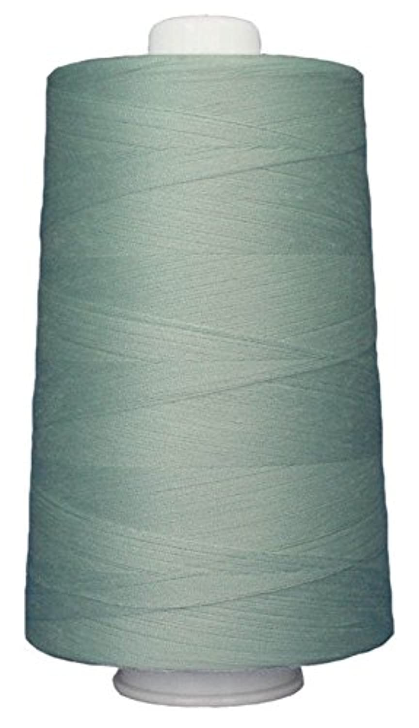 Superior Threads 13402-3070 Omni Fountain Mist 40W Polyester Thread, 6000 yd