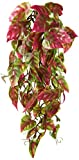Penn-Plax Reptology Climber Vine Reptile Terrarium Plant Decor Red & Green 12inch