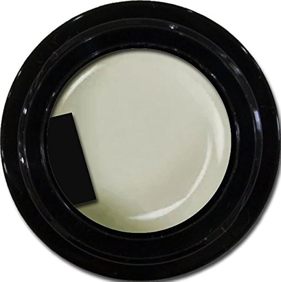 バーマド開発する工場カラージェル enchant color gel M803 MilkyWay 3g/ マットカラージェル M803 ミルキーウェイ 3グラム