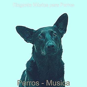 Perros - Musica