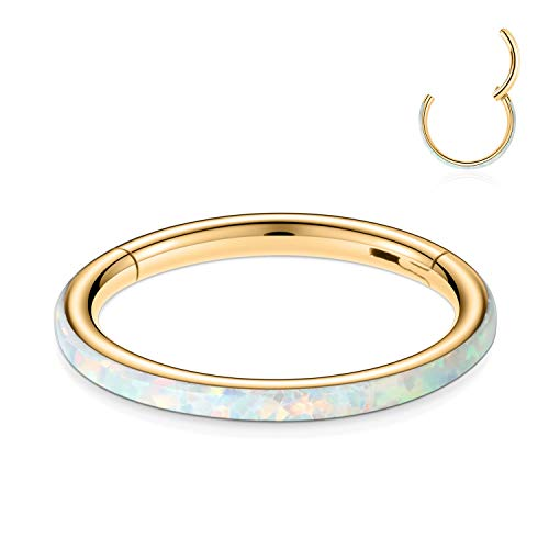 FUNLMO 16G Cartilage Earring Hoop Surgical Steel Septum Jewelry Nose Rings 10mm Conch Piercing Jewelry Conch Hoop Earring Gold