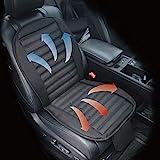 Autostyle AI62371P logo COMFORTLINE raffreddamento e riscaldamento sedile cuscino 12/24V-103x 50cm, nero