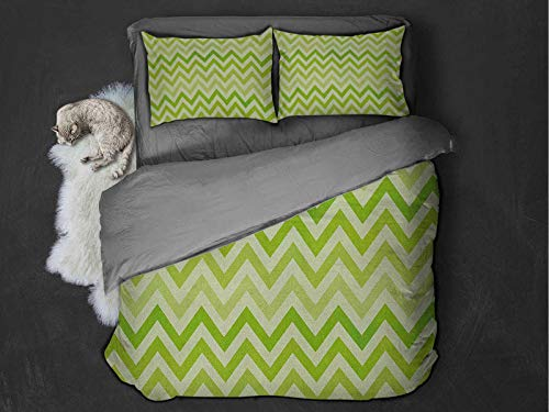Lime Green Comfort Luxurious Softest Premium Bed Sheet Set Chevron Traditional Zig Zag Pattern with Symmetric Lines Tribal Modern Pattern Anti-wrinkle and anti-fading (Twin) Pale Green