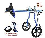 Silla de Ruedas para Perros,Ciclomotor Scooter para Mascota,Adecuado para Perro Discapacitado Paralizada Patas Traseras Rehabilitación Del Caminar Asistido,Ajustable,2 Ruedas,1.5kg(3.3lb)-60(133),Azul