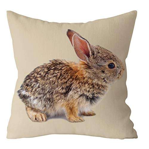 Janly Clearance Sale Funda de almohada de poliéster, diseño de conejo de Pascua, para sofá, coche, decoración del hogar, funda de almohada para el día de Pascua (D)