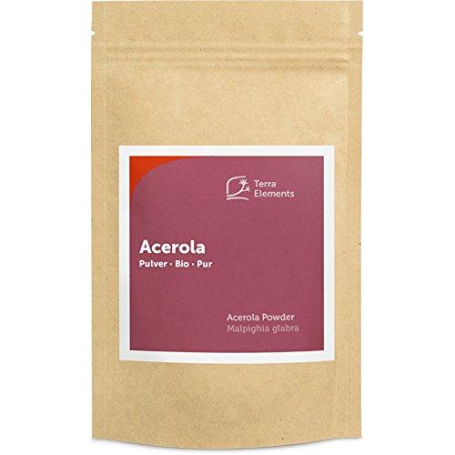 Terra Elements Bio Acerola Pulver, 100 g I 100% rein I Vegan I Rohkost