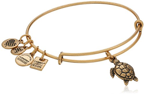 Alex and Ani Turtle Rafaelian Gold Bangle Bracelet