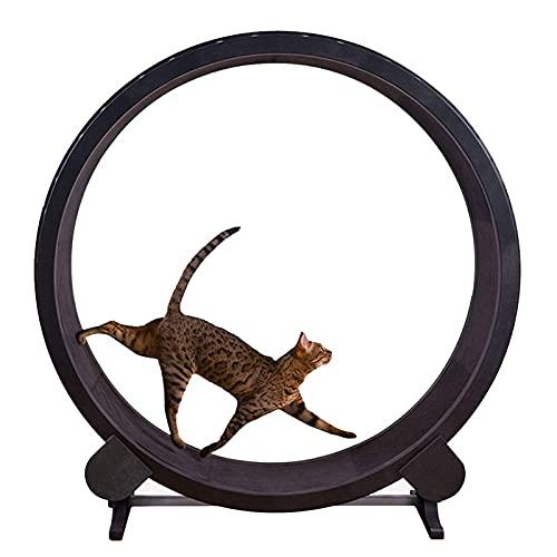 Roue d'exercice pour chat, cadre d'escalade pour chat pour animaux de compagnie, roue d'exercice pour chat, machine de course pour animaux de compagnie, tapis roulant pour chat silencieux, rotation