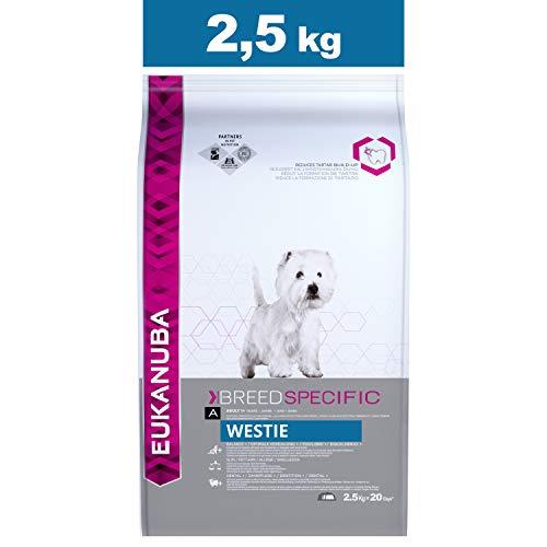 Eukanuba Croquettes Premium pour Chiens Westie, Cairn Terrier, Scottish Terrier, Welsh Terrier, Schnauzer nain - Recommandé par les vétérinaires - 100% Complètes et Equilibrées - Au Poulet - 2,5 kg