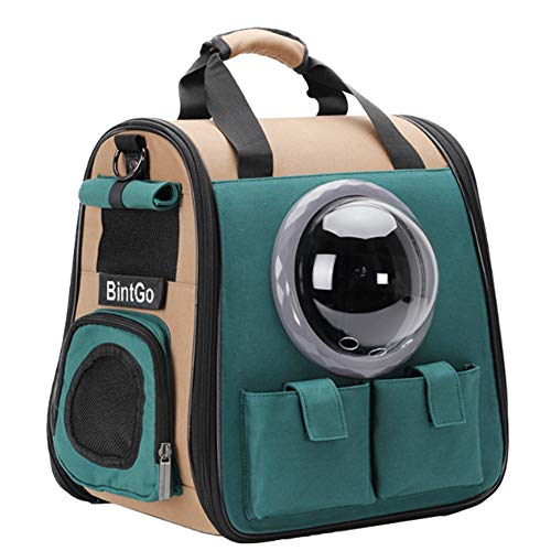 BinetGo Cat Backpack Dog Cat Carrier with Bubble Pet Carrier Backpack for Small Dogs Cats, Ventilated Breathable Design Dog Cat Bag for Travel Hiking Camping Outdoor Green (Style 2, Green)