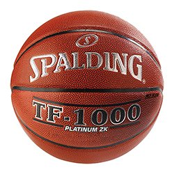 Spalding Basketball TF-1000 Platinum ZK Composite