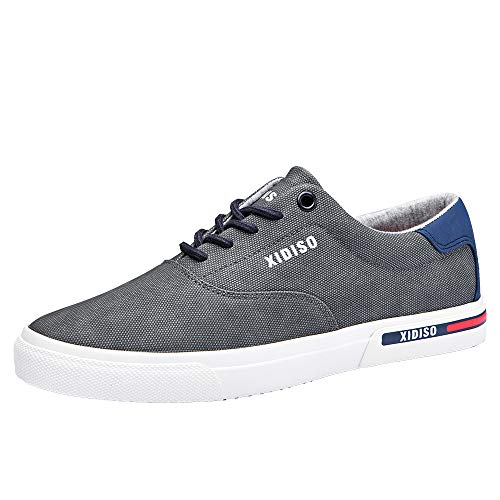 XIDISO Mens Skate Shoes Casual Sneakers for Men Lace Up Walking Shoe,10 Grey