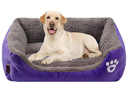 LIELIE Pet Cushion Dog Cat Bed Orthopedic Pet Dog Cat Bed Removable Cushion Machine Washable Anti-Slip Washable Dog Bed,Purple,S:45 * 35 * 12CM