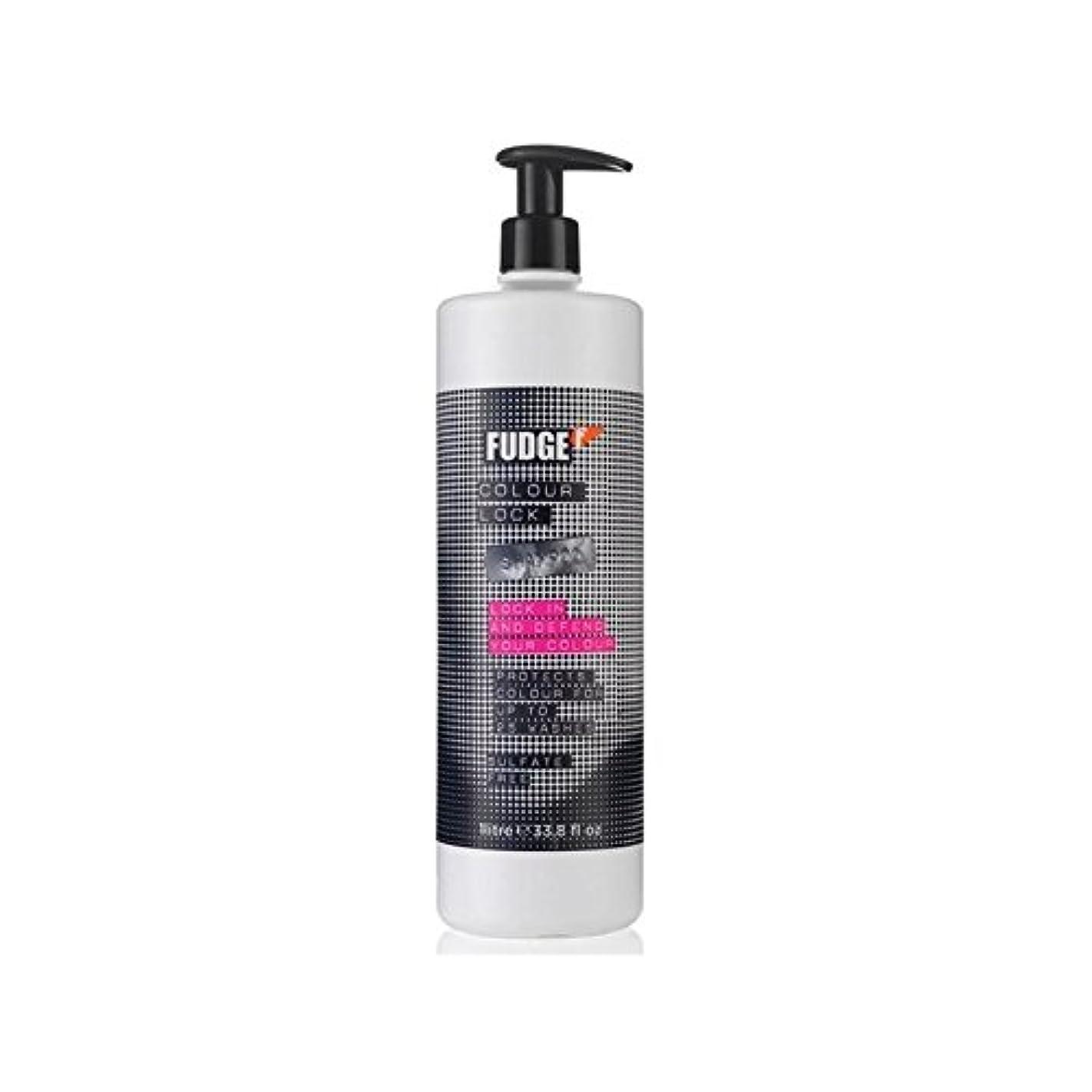 規模漂流兵士ファッジ色ロックシャンプー(千ミリリットル) x4 - Fudge Colour Lock Shampoo (1000ml) (Pack of 4) [並行輸入品]