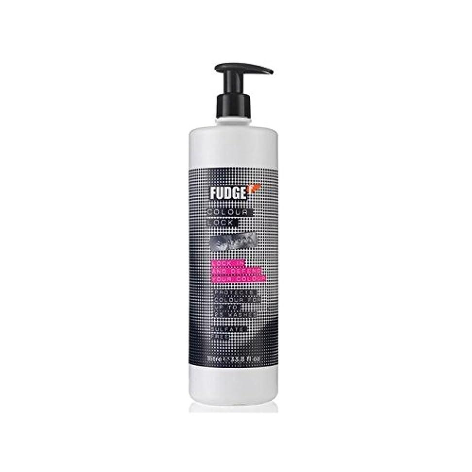 無効米ドルアヒルファッジ色ロックシャンプー(千ミリリットル) x2 - Fudge Colour Lock Shampoo (1000ml) (Pack of 2) [並行輸入品]
