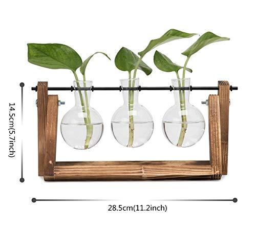 ZSPSHOP Blumenständer Zwiebelvase Mit Vintage Holzständer Und Metall Rotierenden Stab Hydroponik Pflanze Desktop Glas Blumentopf Wohnkultur