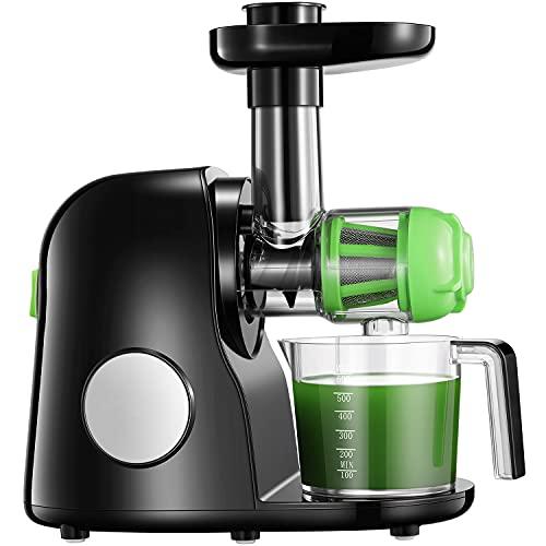 Extracteur de Jus, 2 filtres, Slow Juicer Presse à Froid Machine avec Moteur Silencieux, Fonction Inverse, Tasse à Jus, Brosse de Nettoyage, Adapté à Tous Les Fruits & Légumes
