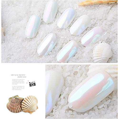 Glitter Mirror Holographic Powder Professional Frosted Pearl Nail Art Powder Chrome Nail Glitter Powder Manucure Effect Chameleon Mermaid Pigment Glitter Dust for Beginners DIY Nail Decoration
