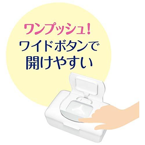 大王製紙 エリエール ピュアナ 除菌ノンアルコール ウェットティシュー 詰替用 16コ入り 75枚