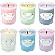 ANJOU Scented Candles Gift Set, Aromatherapy Candle 6 Fragrances Soy Wax with Essential Oils Perfect for Christmas Birthday, Bath Yoga Stress Relief, Anniversary 6 Pack, White