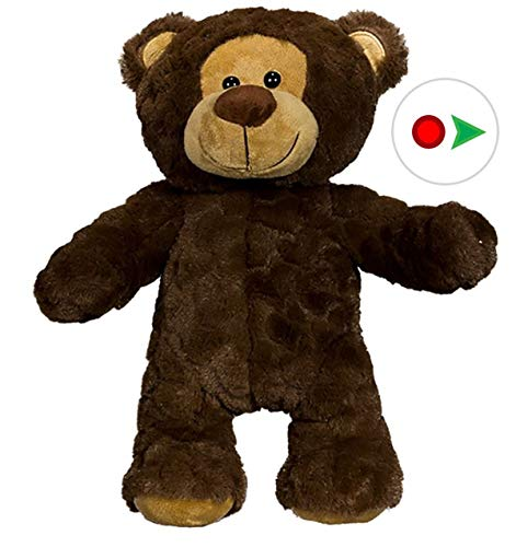 Ready 2 Love in a Few Easy Steps Teddy Mountain Stuffems Toy Shop Record Your Own Plush 8 inch Brown Patches Teddy Bear