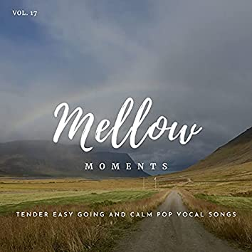Mellow Moments - Tender Easy Going And Calm Pop Vocal Songs, Vol. 17