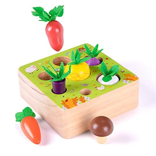 XIAPIA Juguetes Bebes 1 Año Montessori de Madera Niños 2 Años Juego Clasificación Puzzle Educativos Desarrollo de Habilidades Regalos Originales Cumpleaños Navidad