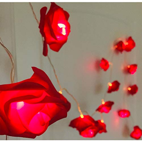Indoor String Rose Lights, 20 Led Battery Operated Flower Hanging Lights for Valentine's Day Wedding Anniversary Spring Party Decorations, Teen Girls Bedroom Decor, Gift Idea (Red)
