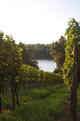 Wuerttemberger-Wein-Winzer-vom-Weinsberger-Tal-Lemberger-QW-trocken-NOBLESSE-1-x-075-l