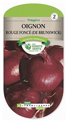 Les doigts verts Semence Oignon Rouge Foncé de Brunswick