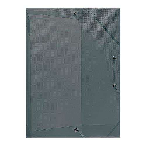 Herlitz 10722528 Heftbox A4 PP transluzent Rückenbreite 4 cm, grau