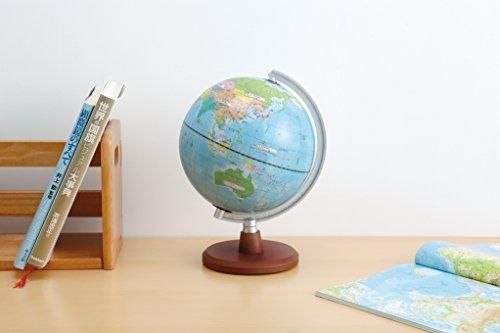 レイメイ藤井地球儀先生おすすめ小学生の地球儀20cmOYV11