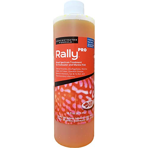 Ruby Reef Rally Pro (16 oz)