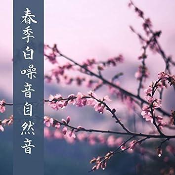 春季白噪音自然音 - 放松大脑, 春季森林景色, 催眠纯音乐, 瑜伽冥想