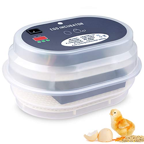 HBlife 9-12 Digital Automatic Incubator for Chickens, Ducks, Quail, and Other Birds