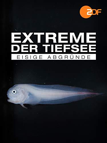 Extreme der Tiefsee - Eisige Abgründe