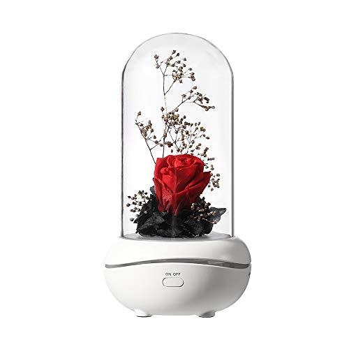 Luz nocturna recargable por USB con aromaterapia para niñas, día de San Valentín, boda, día de la madre, aniversario, cumpleaños, día de acción de gracias, Navidad