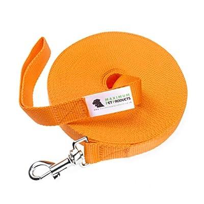 Maximum Pet Products 50ft Orange Dog Training Lead