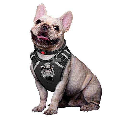 BABYLTRL Silver Big Dog Harness No-Pull Anti-Tear Adjustable Pet Harness Reflective Oxford Material Soft Vest for Medium Large Dogs Easy Control Harness (XL, Black)