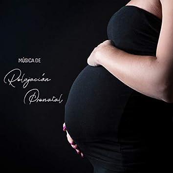 Música de Relajación Prenatal: Sonidos Tranquilos Para Usted Y Su Bebé