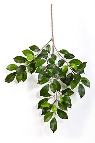 artplants.de Künstlicher Ficuszweig AJITH, 60 grüne Blätter, 45cm - Kunst Ficus - Deko Zweig