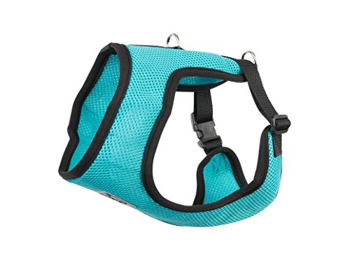 RC Pet Products Cirque Soft Walking Dog Harness, Large, Teal