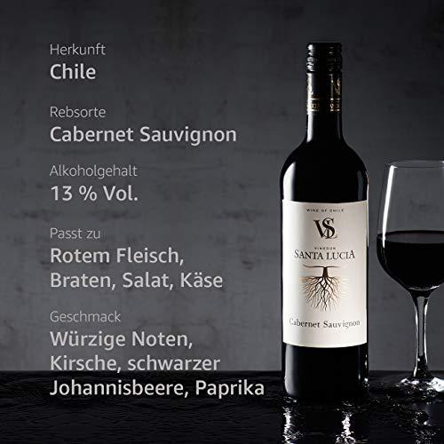 Santa Lucia Cabernet Sauvignon Rouge Chile (6 x 0.75 l) - 2