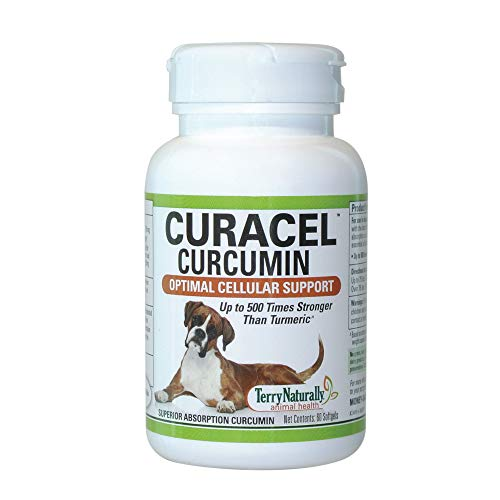 Terry Naturally Animal Health Curacel Curcumin - 375 mg  60 Softgels - Curcumin for Dogs  Enhanced Absorption Antioxidant Support  Stronger Than Turmeric - Canine Only - 60 Servings