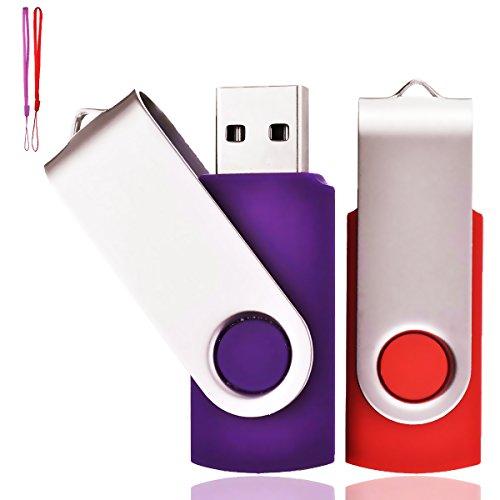 Lot de 2 Clé USB 4 Go USB 2.0 Mémoire Flash Drive Clef USB Pivotantes avec Cordes Bon Cadeau pour Enfant Parents et Amis (4G, Rouge/Violet)
