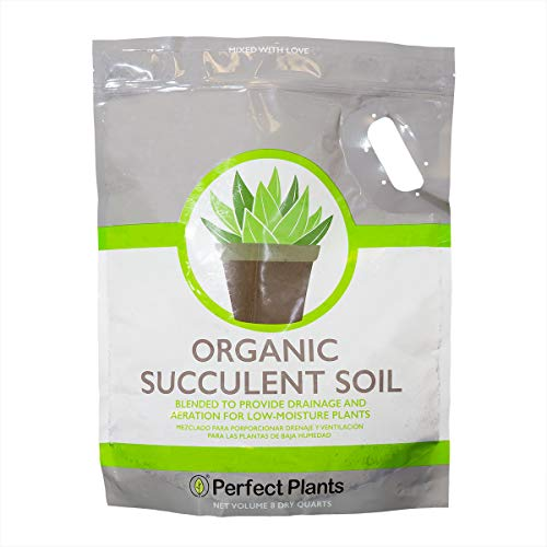 Succulent & Cactus Soil Mix by Perfect Plants (8QTS)