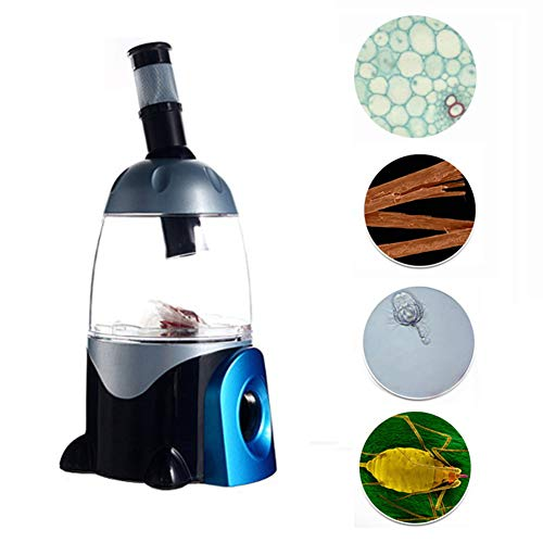 Kinderloep, 20-30X Insectobservatie Vergrootglas Doos Kind Student Buitenactiviteiten Natuurverkenning Wetenschappelijk experiment Speelgoed
