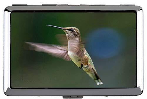 Zigarettenschachtel, Kolibri-grüner Flügel halten Visitenkarten in einwandfreiem Zustand