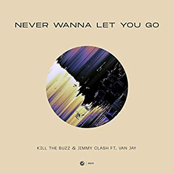 Never Wanna Let You Go
