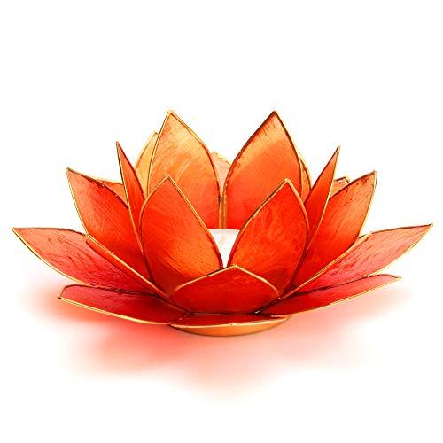 Lotus Teelicht orange aus Capiz Muschel - Natur Qualität Kerzenhalter, Windlichter, Teelichthalter - Dekoration 13,5 cm x 13,5 cm x 8 cm